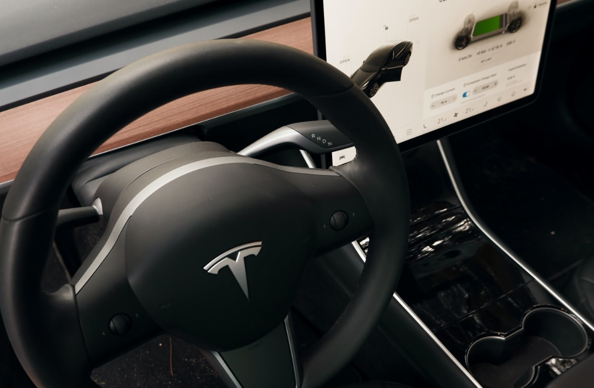 Tesla in-car purchases