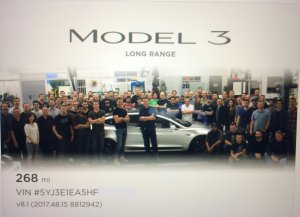 Tesla Model 3 Team Photo and Silhouette Easter Egg